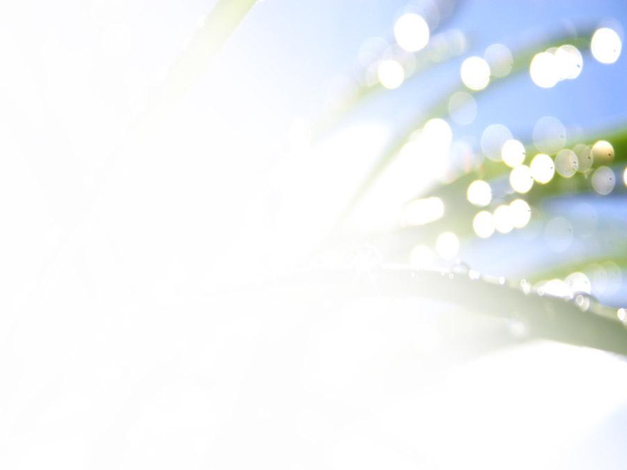 美女客服图片素材_清晨绿色水滴水珠ppt背景图片素材,绿色桌面保护眼睛壁纸免费 ...