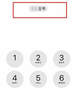 苹果 iPhone XS Max 如何切换号码拨打电话?
