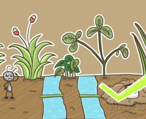 小蚂蚁搬食物到洞里,每次只能搬动最上方的,大的不能放在小的上面,中间可以暂时堆放,该怎么办搬,史小坑的烦恼5第85关攻略!