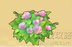 摩尔庄园粉玫瑰花簇获得方法?